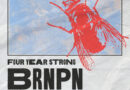 Four Year Strong Releases BRNPN RMX